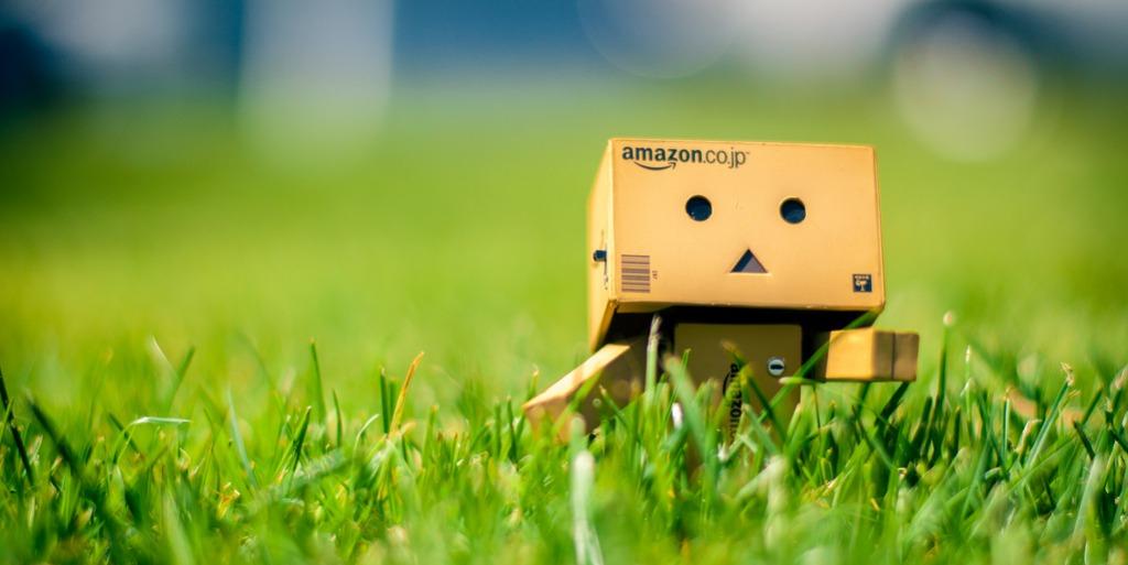 Amazon cardboard figure