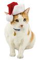PetSmart stocking
