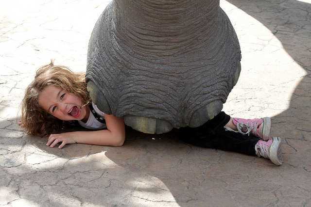 Elephant Stepping On Girl
