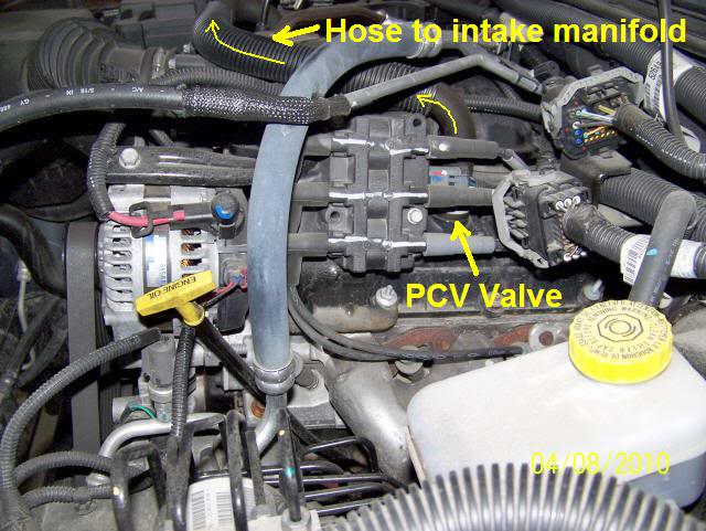Jeep Wrangler Egr Valve Location Jeep Get Free Image