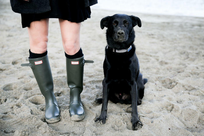 Hunter Boots and dog