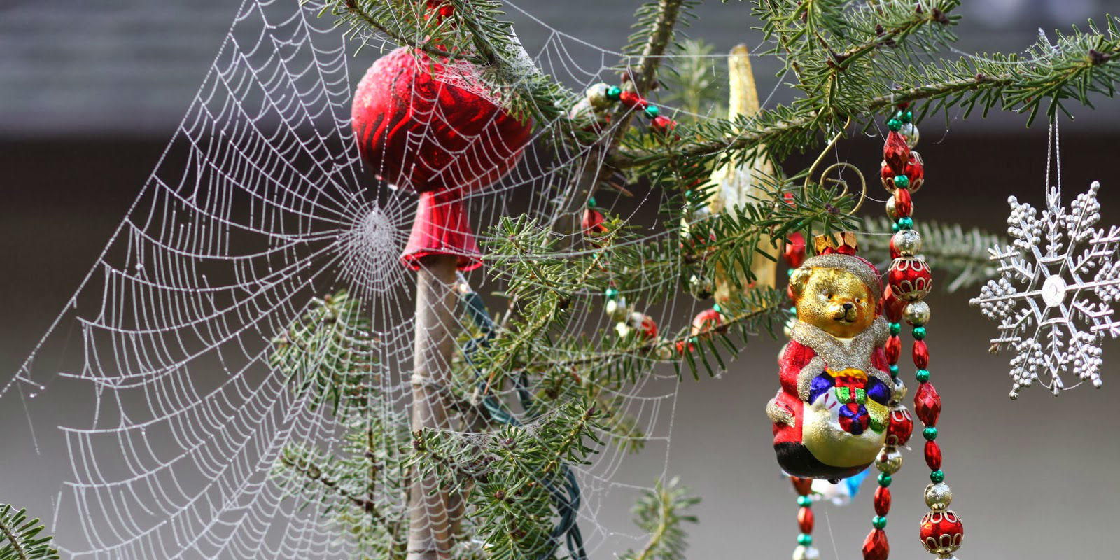 Image result for christmas ukraine spider