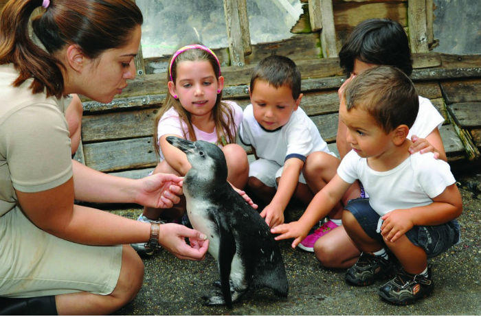 kids petting a penguin