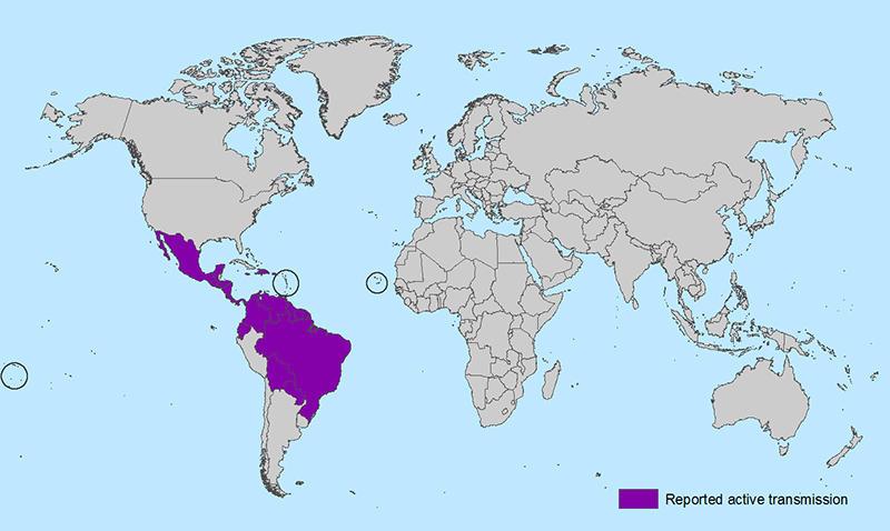 Zika virus-infected areas